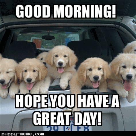 Cute Good Morning Meme - good morning monday cerca con google good morning pinterest beagle and dog