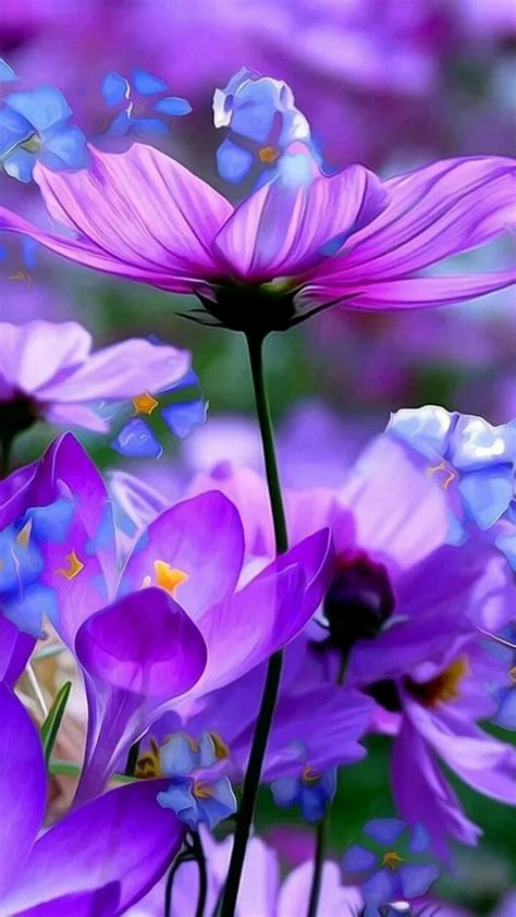 soft beautiful picture of purple blue flowers