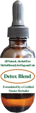 Astragalus Root Detox by Joint Support Dogs Cats Remedies Treatments Help