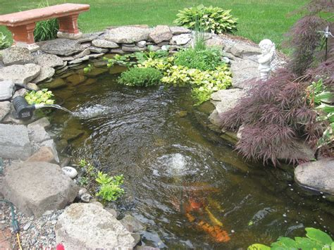 backyard fish pond maintenance small koi pond kits garden pond and koi pond aeration