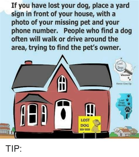 dog house phone number if you have lost your dog place a yard sign in front of your house with a photo of