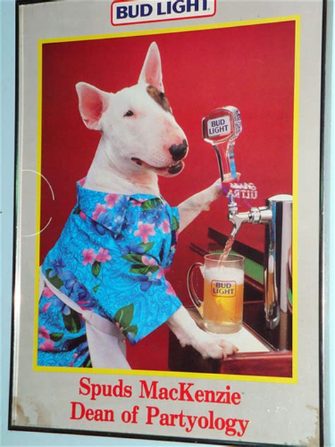 what of was spuds mackenzie spuds s best friend by cube