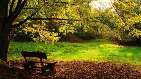 autumn park bench wallpapers catalogue com autumn bench in the park in