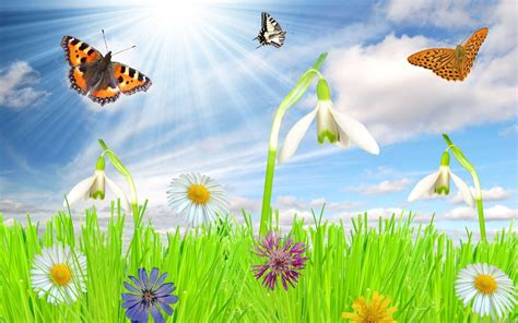 wallpaper free spring free spring wallpapers and screensavers wallpaper cave