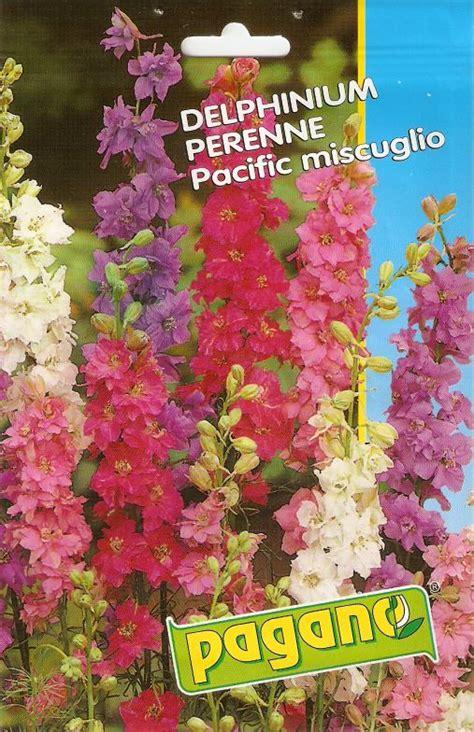 sementi fiori perenni delphinium perenne pacific in miscuglio semilandia