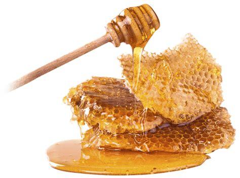 Madu Organik Calliandra Ws Honey beeland market 100 all honey and pollens