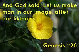 Genesis Prophecy Rock Series genesis 1 26 non trinitarian who is god in this text