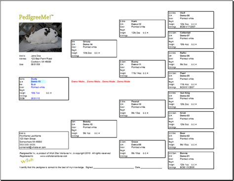 rabbit pedigree template pedigreeme rabbit pedigree software features easy and