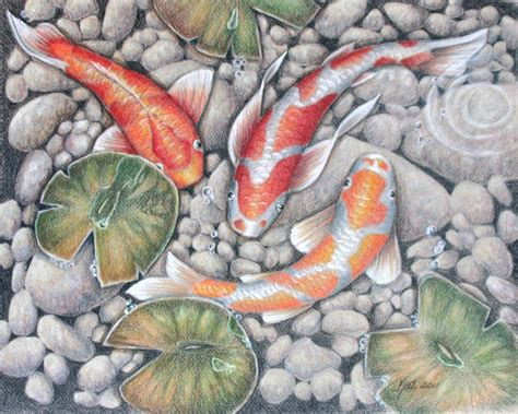 koi pond thediabeticspoon drawing realistic and stylish koi pond 2 by katlewing on deviantart