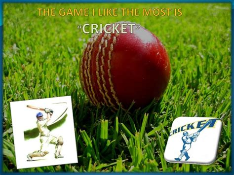 cricket themes for powerpoint 2007 cricket ppt