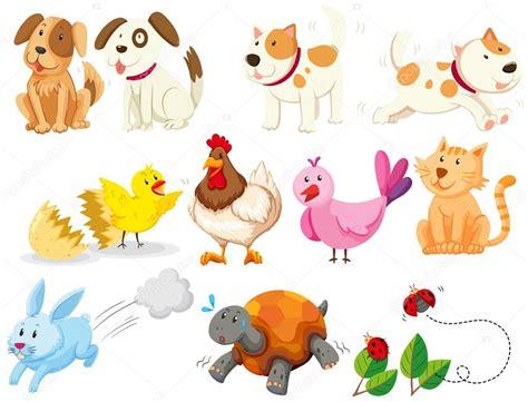 imagenes tipo vector diferentes tipos de animales dom 233 sticos vector de stock