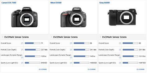 format video sony a6000 canon eos 750d rebel t6i sensor review first canon aps