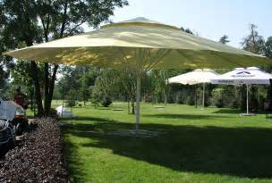 Large Patio Umbrella Zeta Large Umbrellas Large Parasols Apex Sheltersapex