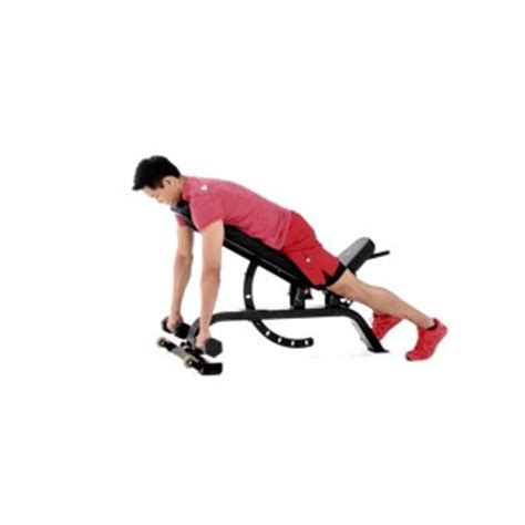 external rotation on bench dumbbell face pull with external rotation video watch