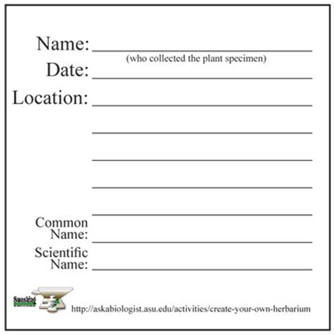 Labeling Your Plants Ask A Biologist Plant Label Template