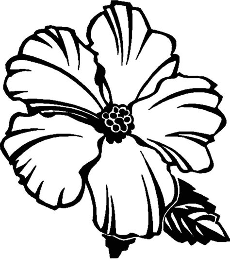 Coloring Pages Printables by Free Printable Hibiscus Coloring Pages For