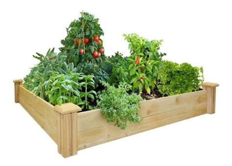 8 vegetables in planting vegetables in raised beds the gardens of heaven