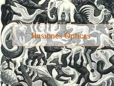 ilusiones opticas camuflaje ilusiones 243 pticas