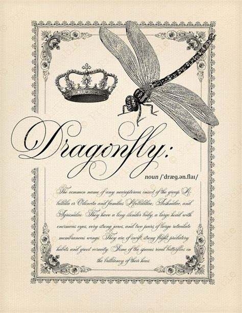 free printable fabric transfers dragonfly clipart dictionary quote digital instant