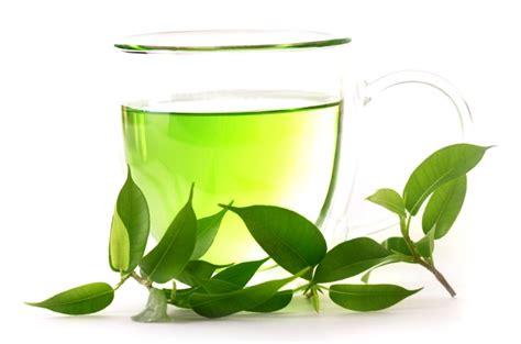 Teh Hijau Yang Murah manfaat yang terkandung dalam teh hijau ali mustika sari