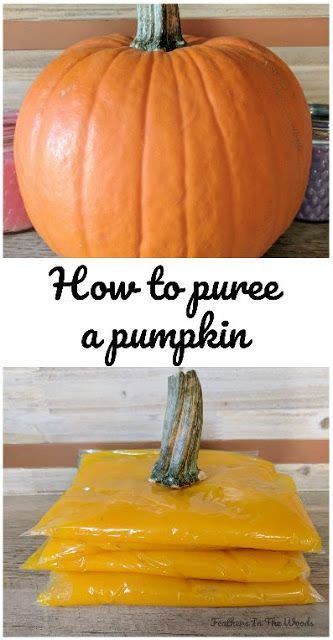 whole pumpkin preservation how to puree a pumpkin to recipes pumpkin puree pumpkin