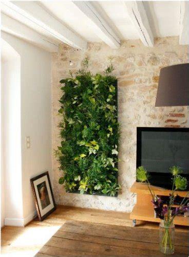 giardini verticali per interni come realizzare una parete vegetale idee green