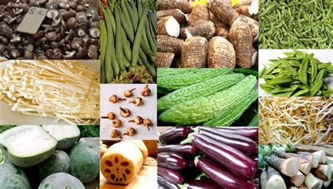 vegetables used in asian cooking asian vegetables beans melons mushrooms and root