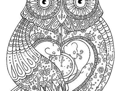 coloring pages printable adults coloring pages of owls for adults bestofcoloring