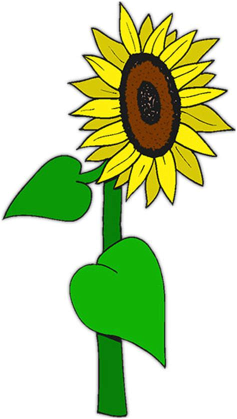 sunflowers animated gifs clipart