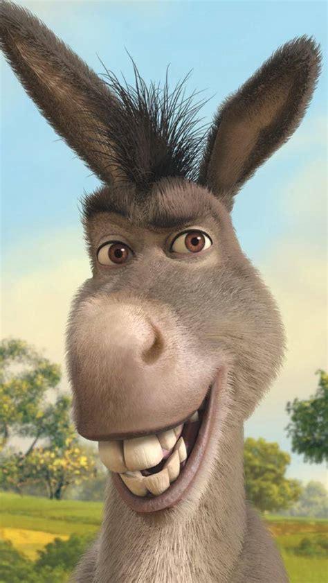 donkey wallpaper  mmtari    zedge
