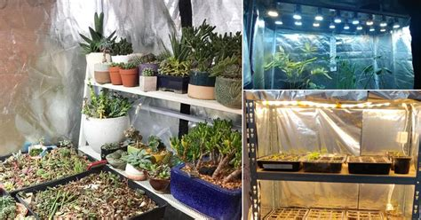 diy grow tent ideas  indoor gardeners balcony