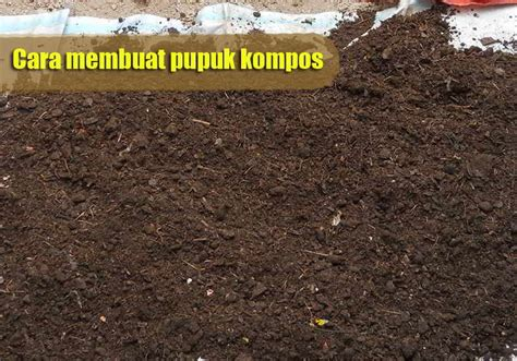 Pupuk Organik Kompos Dari Sah cara membuat pupuk kompos dengan cat dan mudah