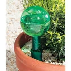 Self Watering Self Watering Pots Apartmentgyan S Blog