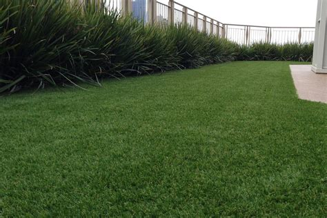 best synthetic grass melbourne landscape designs for your home