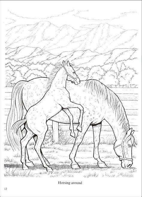 realistic horse coloring book pages