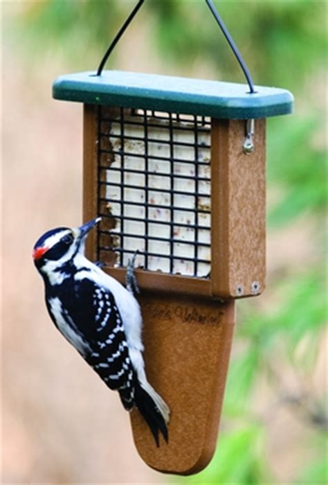 wild birds unlimited how do i stop woodpeckers from