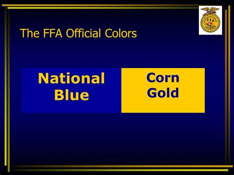 what are the ffa colors your ffa program objective summarize the events that