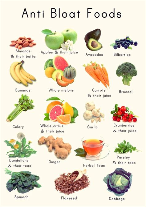 Detox Debloat Diet by I Had Found The Holy Grail Of Weight Loss The 3 Week