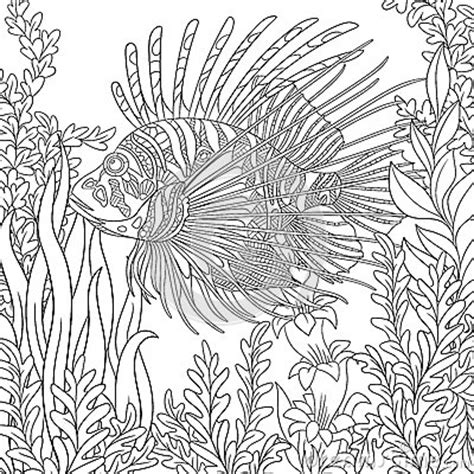 zebrafish coloring page zentangle stylized zebrafish lionfish stock vector