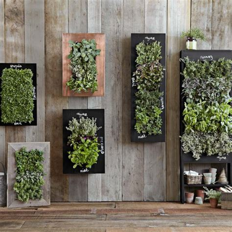 patio wall planters chalkboard wall planter williams sonoma