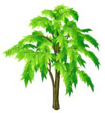 image neem tree sprite.png here be monsters wiki wikia