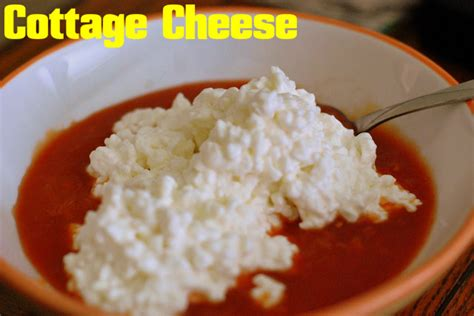 cottage cheese uses cottage cheese benefits and uses for health stylish walks