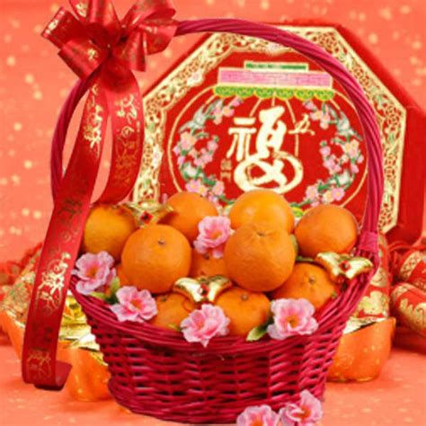 new year gift oranges oranges delivery new year mandarin orange