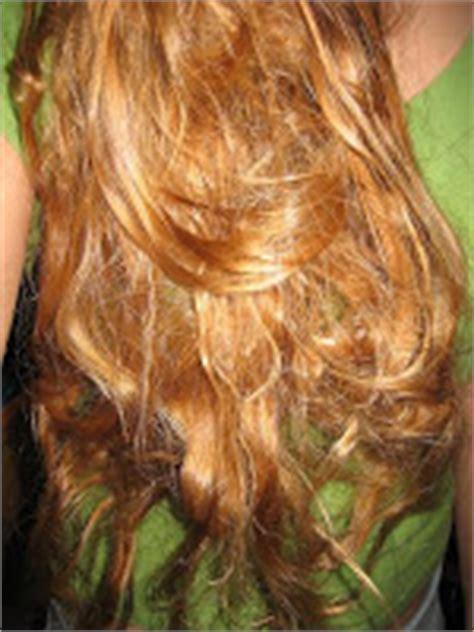 tangled hair techs got tangled matted or dreadlocked hair