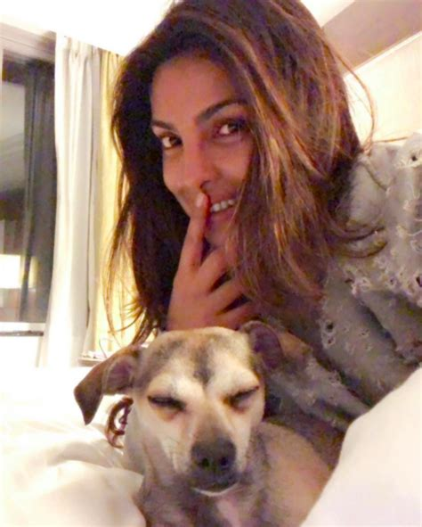 priyanka chopra facebook photos priyanka chopra priyanka chopra added a new photo