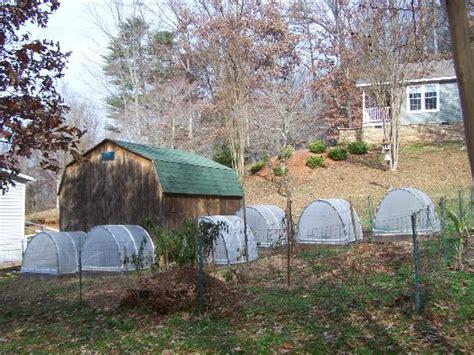 hoop house gardening in winter hoop house update