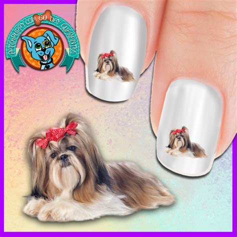 shih tzu nails shih tzu with bows nail now 50 more free patch puppy