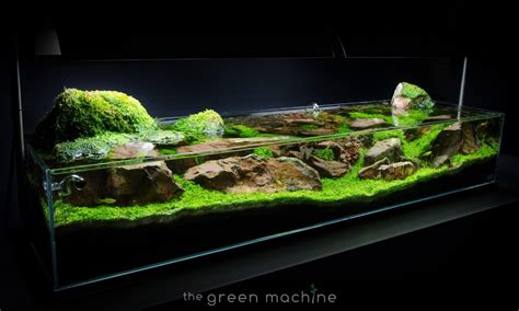 aquascape lights aquascape aquarium lighting system lighting ideas