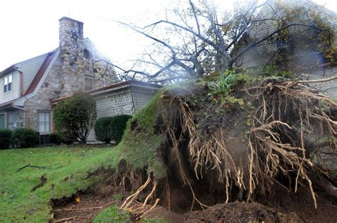 a tree fell on the building at kelso cornelius funeral