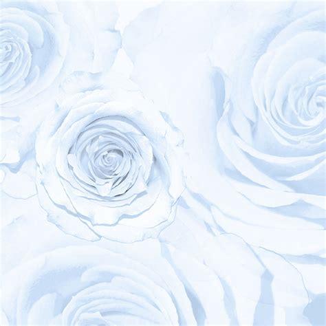 white design blown up white roses wallpaper brett design inc